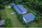 Ảnh: Nhà ca sĩ Mỹ Linh và các khu nghỉ dưỡng giữa rừng phòng hộ ở Hà Nội