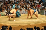Võ sĩ Sumo bất tỉnh sau đòn chỏ hiếm thấy