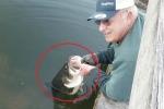 Clip: Câu cá bằng tay, tóm được cá 'khủng' trong nháy mắt