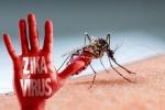 Phát hiện một ca nhiễm Virus Zika ở Vĩnh Long