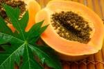 Những thực phẩm giảm táo bón hiệu quả