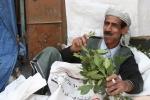 Video: Những người Yemen chỉ ăn lá cây để tồn tại