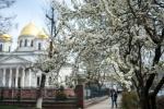 Ukraine thừa nhận không đủ khả năng lấy lại Crưm