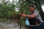Video: Người Cà Mau quăng lưới bát quái bắt tôm kiếm tiền triệu mỗi ngày