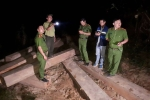 Mật phục bắt 5 xe công nông chở gỗ lậu từ cửa rừng tuồn ra ngoài tiêu thụ
