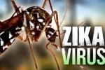 Cảnh báo: Virus Zika có thể lây qua quan hệ bằng miệng