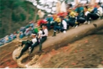 Các lễ hội nguy hiểm nhất thế giới: Liều mạng cưỡi thân cây khổng lồ lao vách núi ở Nhật Bản