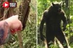 Video: Phát hiện sinh vật 'nửa người, nửa chó' khi đi bộ trong rừng