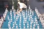 Clip: Cơ thủ billiard biểu diễn siêu đẳng khiến người xem trầm trồ