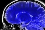 Tìm ra bí quyết giúp não bộ luôn minh mẫn