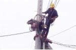Đồng nghiệp bất cẩn bật cầu dao, nhân viên điện lực bị điện giật chết