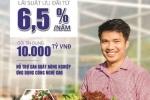 Vay sản xuất nông nghiệp: BIDV dành 10.000 tỷ đồng với lãi suất chỉ từ 6,5%/năm