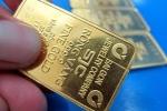 Giá vàng hôm nay 13/7: Vàng đang là kênh đầu tư an toàn và sinh lời nhất?