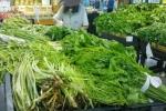 Clip: Bắt quả tang cơ sở đưa rau không rõ nguồn gốc vào siêu thị ở Hà Nội
