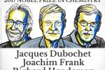 Giải Nobel Hóa học 2017 cho nghiên cứu kính hiển vi electron nhiệt độ thấp
