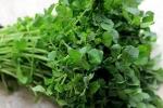 Rau cải xoong: 'Siêu thực phẩm' cực tốt cho người nghiện thuốc lá