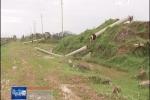 Video: Hàng loạt cột điện ở Hà Tĩnh gãy đổ, lộ ra lõi thép mỏng manh