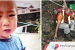 Lạc trong rừng 3 ngày, cậu bé 2 tuổi ở Nhật Bản vẫn sống sót