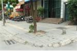 Vỉa hè Hà Nội lát đá bền vững 70 năm: Phù hợp hay lãng phí?