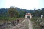 Vĩnh Phúc hủy phương án phá rừng phòng hộ xây 'siêu' nghĩa trang