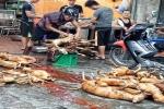 Ngôi làng giết mổ chó lớn nhất Việt Nam: Không dám giết chó vì sợ 'chó báo oán'