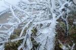 Clip: -1°C, băng tuyết phủ dày trên đỉnh Mẫu Sơn