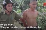 Video: Thanh niên đi trộm bưởi để lấy tiền mua ma túy