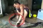 Clip: Người đàn ông tắm, xỉa răng cho rắn khủng như chăm thú cưng