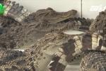 Ông trùm tỷ phú miền đất lúa sở hữu hàng vạn con cá sấu