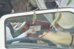 Nhiều CSGT Hà Nội nghi nhận mãi lộ, ĐBQH 'khuyến khích người dân quay clip giám sát'