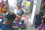Clip: Bi hài cảnh chim 'táo tợn' cướp tiền trong cửa hàng rồi 'cao chạy xa bay'
