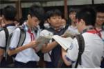 Điểm chuẩn vào lớp 10 tại Phú Yên 2018