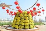 Gần 80 loại hoa hội tụ về đường hoa quy mô lớn tại Đà Nẵng