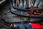 Ảnh: Hàng loạt kênh đào ở Venice cạn trơ đáy sau siêu trăng