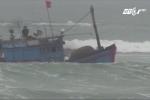 Bão số 10 hoành hành ở Quảng Ngãi: Sóng đánh chìm 4 tàu cá của ngư dân
