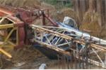 Cần cẩu đổ sập đè chết nam sinh: Hủy bỏ xây dựng công trình