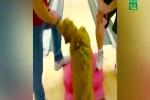Chú chó có biệt tài chơi bowling khiến dân mạng ngả mũ bái phục