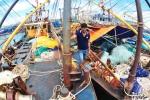 Tàu vỏ thép chục tỷ đồng 'đắp chiếu' ở Bình Định: Có đủ căn cứ sẽ khởi tố