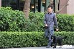 Chó nghiệp vụ rà mìn quanh khách sạn đoàn Triều Tiên dừng chân