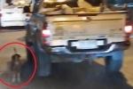 Clip: Bị bỏ rơi giữa đường, chú chó tuyệt vọng chạy theo xe chủ
