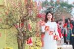 Ảnh: Thiếu nữ Hà Thành xúng xính áo dài khoe sắc bên hoa đào dịp Tết Kỷ Hợi 2019