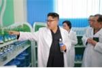 Quan chức Triều Tiên đào tẩu tiết lộ bí mật sức khỏe Kim Jong-un