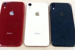 Rò rỉ hình ảnh smartphone giá rẻ iPhone XC trước giờ ra mắt