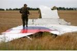 Video: Nga phản bác kết luận điều tra về MH17