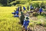 Sinh viên Học viện An ninh đội nắng giúp dân Yên Bái khắc phục hậu quả sau mưa lũ