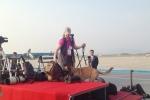 Chó nghiệp vụ kiểm tra từng vật dụng ở sân bay Nội Bài trước giờ đón Tổng thống Trump