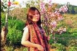 Vụ nữ phó giám đốc sở bị 'tố' bẻ hoa anh đào: Thông tin mới nhất