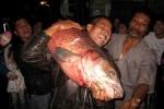 Đua sắm lưới săn 'thủy quái' hồ Cấm Sơn