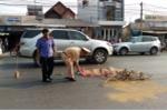 Truy tìm hai xe ô tô cùng đâm chết người đàn ông rồi bỏ trốn