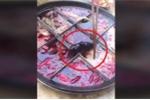 Clip: Hoảng hồn phát hiện chuột chết trong nồi lẩu ở nhà hàng Trung Quốc